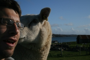 The sheep was telling me a funny joke.