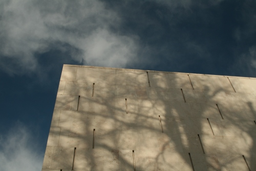 My turn to be artistic again.  This is a shadow of a tree reflected on Salzburg's Museum of Modern Art.