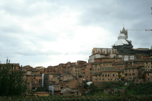 Sienna from Santa Domenica