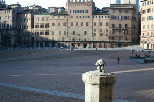 Snuggles hanging out at Piazza del Campo.