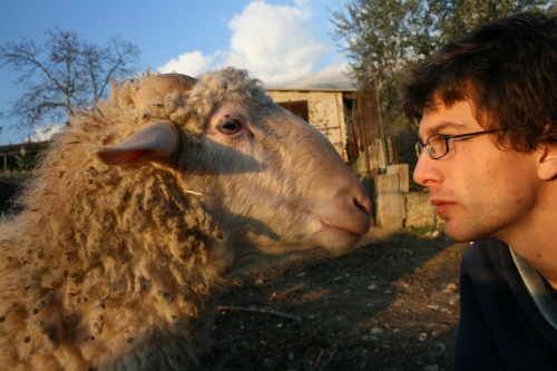 I am confronting the ram about his indecencies.  I am smelling another UFC match-up- Ram vs Turkadctyl.