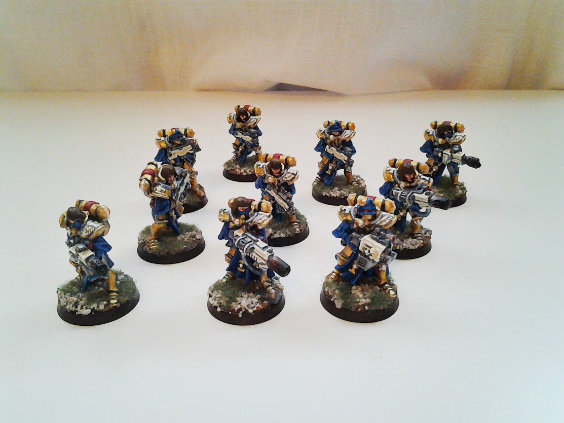 Adepta Sororitas Dominions Squad A The Roost Of