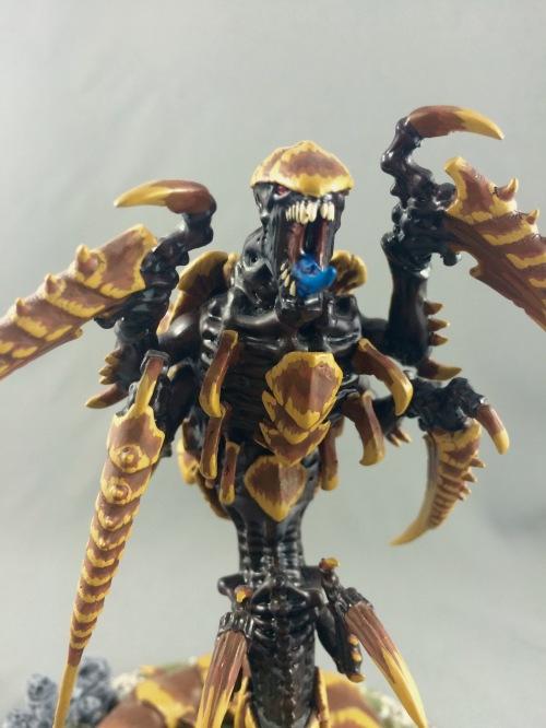 scratchtrygon07