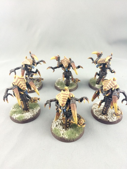 Raveners 7