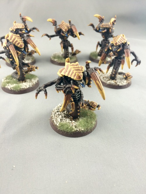 Raveners 8